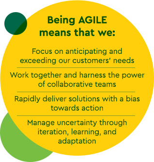 Focus on anticipating and exceeding our customers' needs     Work together and harness the power of collaborative teams     Rapidly deliver solutions with a bias towards action     Manage uncertainty through iteration, learning, and adaptation