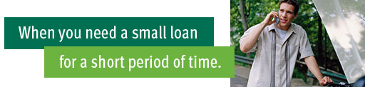 When you need a small loan for a short period of time.