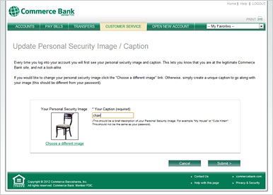 screenshot of online security